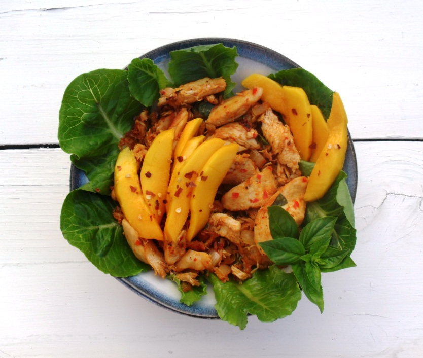Chicken and Mango salad chicken and mango salad 1