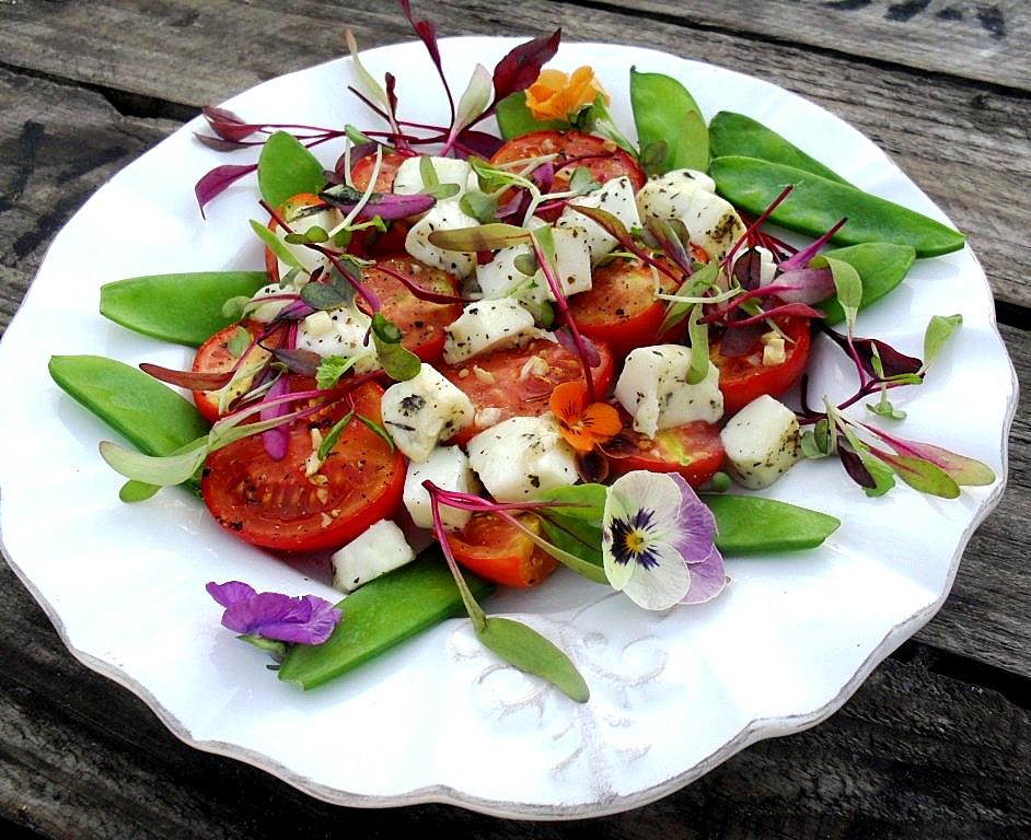 Hot tomato and haloumi salad