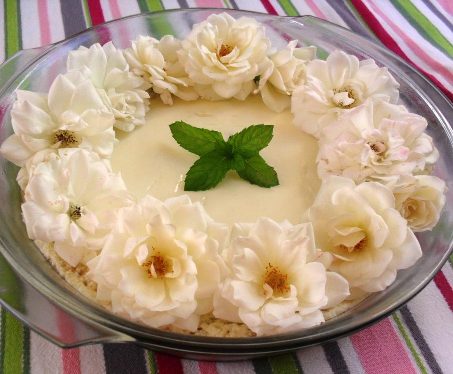 Yoghurt tart