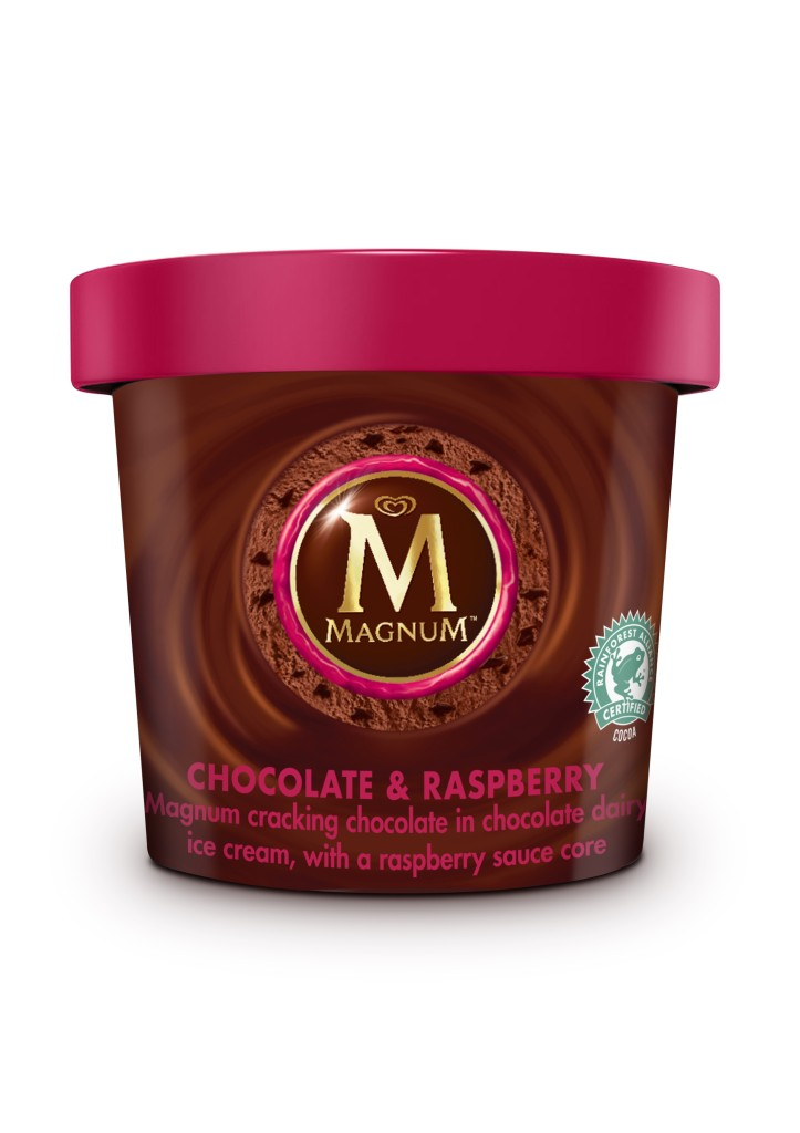 Magnum chocolate and raspberry pint